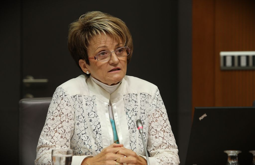 Začasni minister za šolstvo bo Miro Cerar