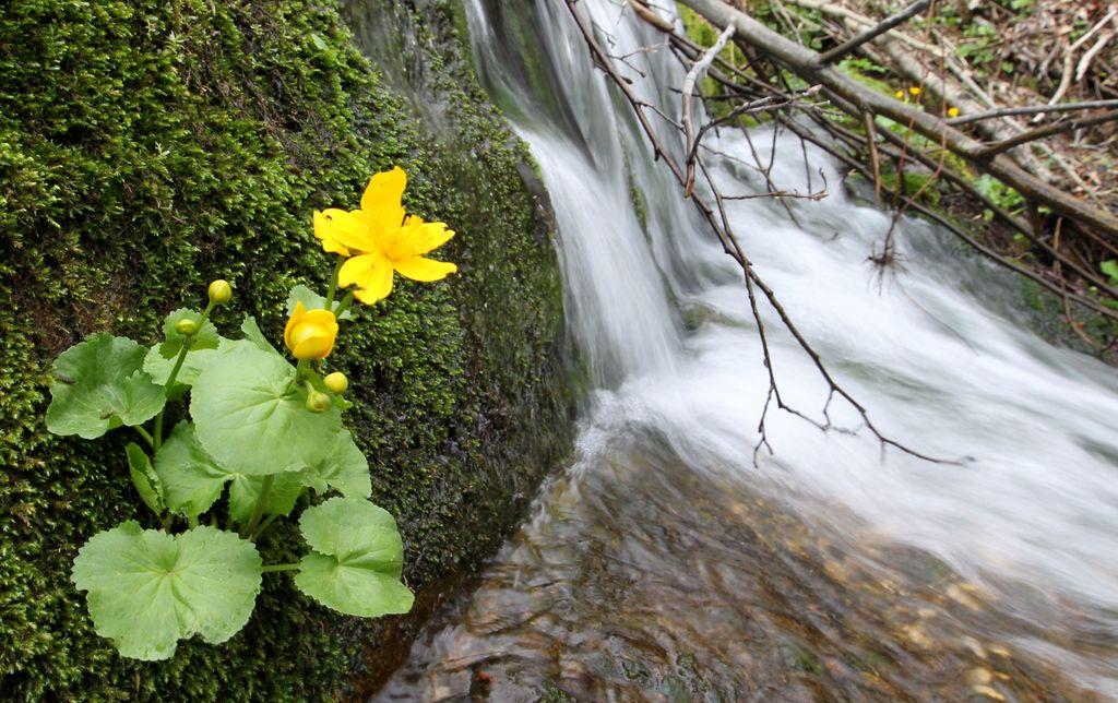 Slovenija z vodnimi območji še vedno ravna slabo