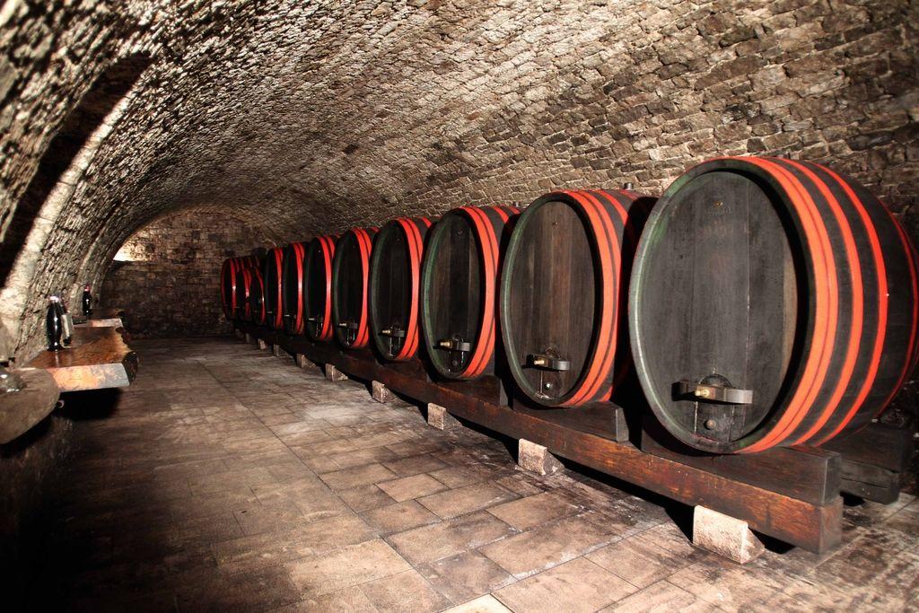 Trije svetovni šampioni tudi slovenskim vinarjem