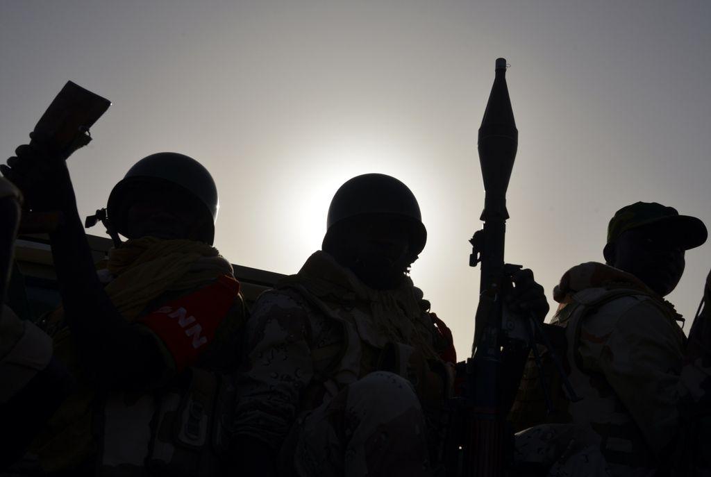 AI: Nigerijska vojska odgovorna za smrt 8000 pridržanih