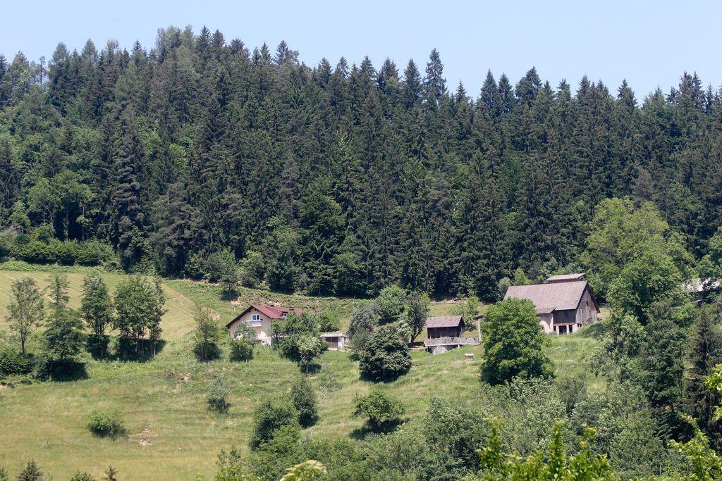 V Dravogradu moški ubil partnerko in storil samomor