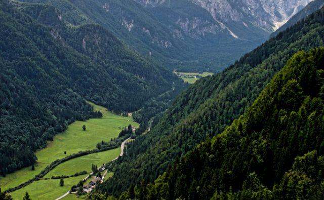 Panoramska cesta