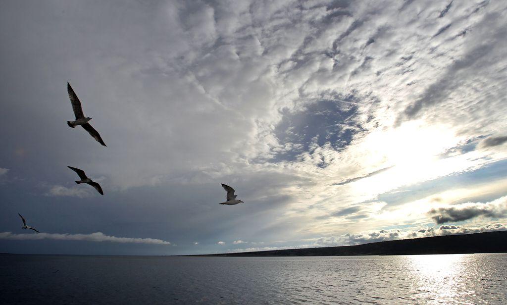 Ozonsko plast ščitimo, a ogrožamo podnebje