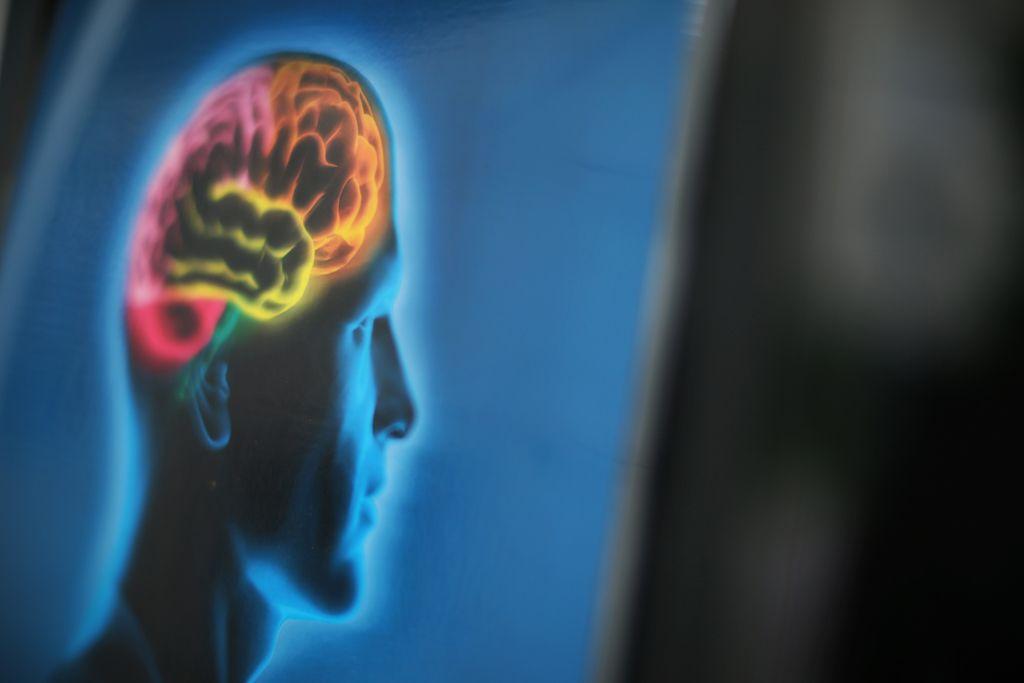 Z meritvijo možganov do poslovnih uspehov