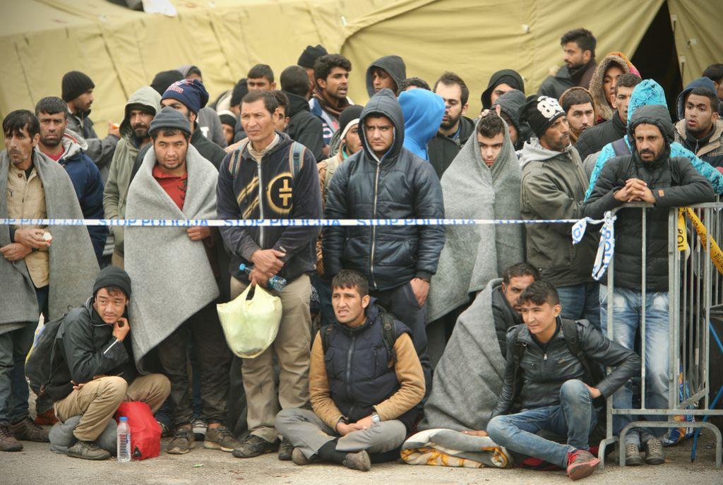 Vlada zavrača vrnitev migrantov, ki so le prečkali našo državo