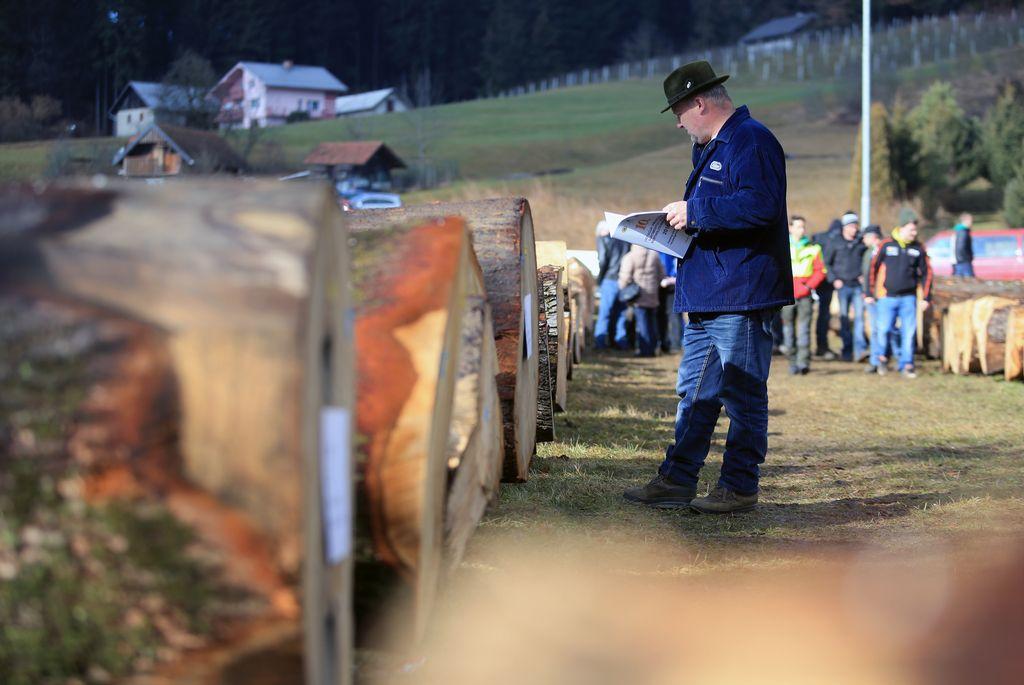 Najboljši slovenski les smo prodali tujcem