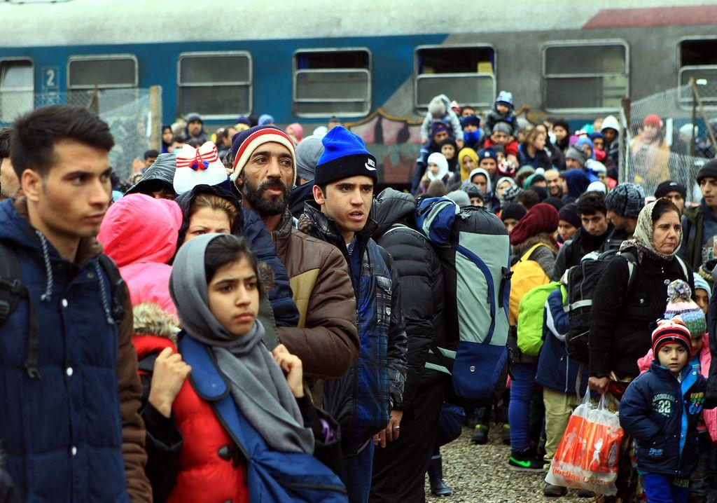 Cerar: Slovenija bo sprejela begunce iz Grčije