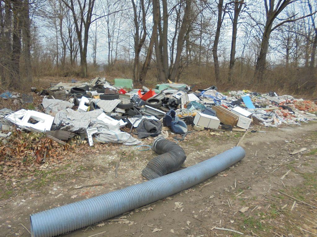 V zeleni prestolnici Evrope odpadkov nočejo videti