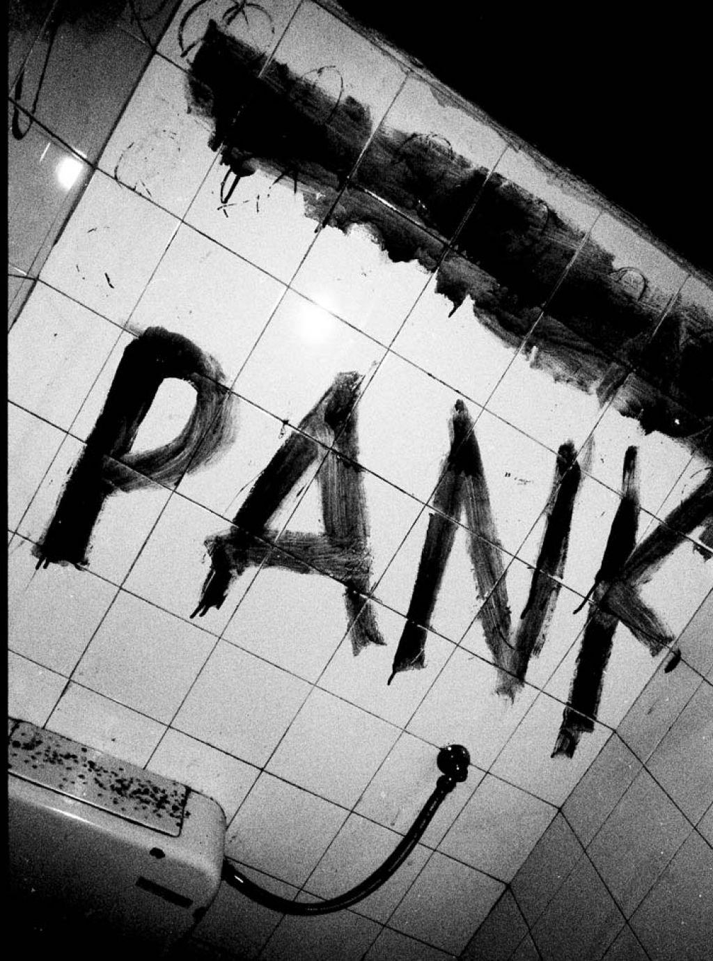 Balkan Pank II: Knjiga o punku ali punk knjiga?