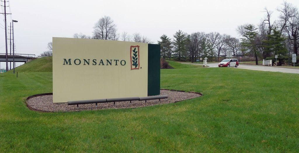 Bayer za 62 milijard dolarjev kupuje Monsanto