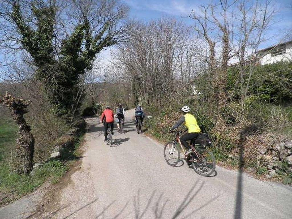 Nedelova akcija: Tokrat na Goriško in v okolico Komna
