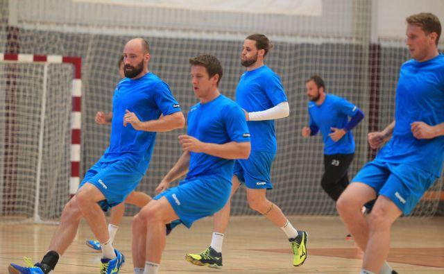 Trening rokometne reprezentance, 13.7.2016, Zreče [rokometna reprezentanca]
