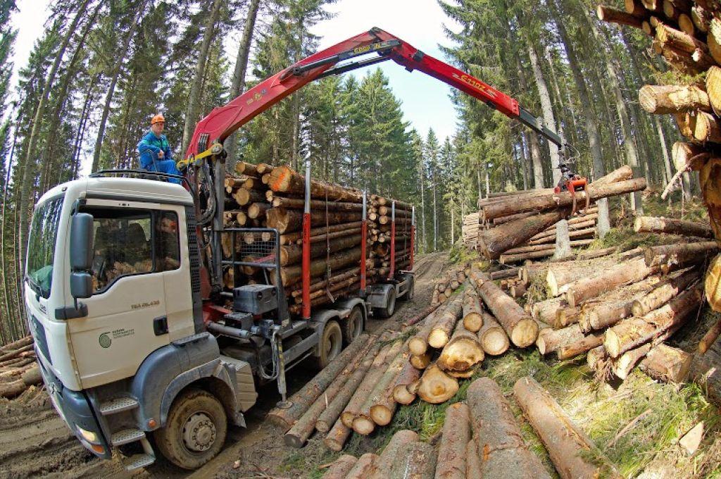 Gozdarji pokurili več nafte in bencina