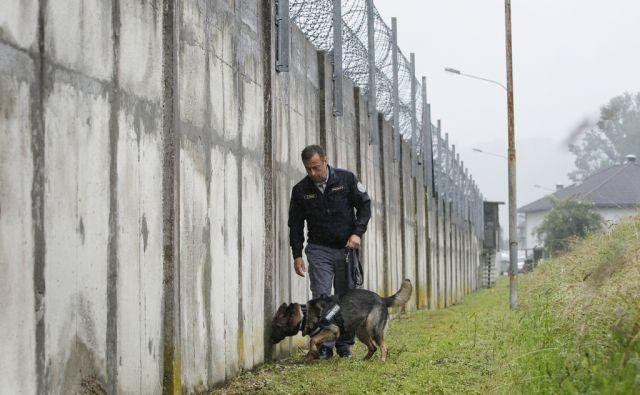 Aleš Udovč s svojim psom, ki odkriva skrite mobitele v zaporu na Dobu, 15. junija 2016 [Aleš Udovč,zapori,Dob]