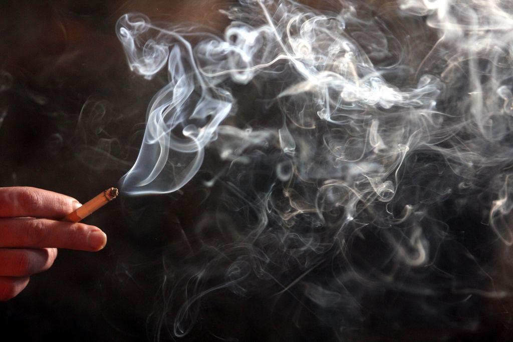 Dan brez cigarete