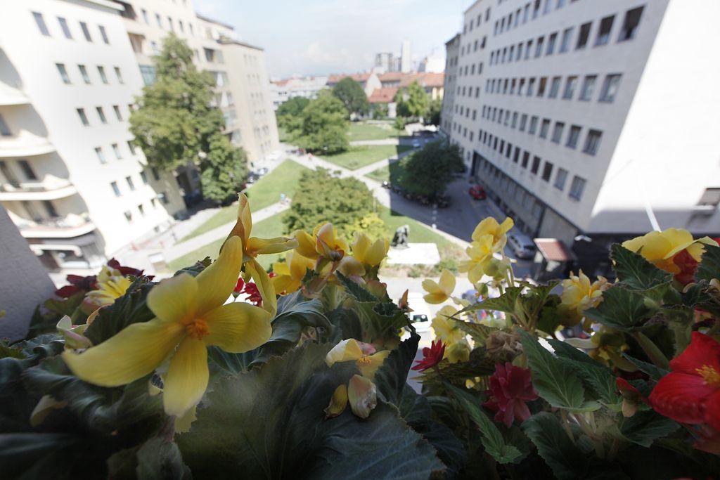 V tretjem nadstropju Nebotičnika, tam, kjer cvetijo begonije