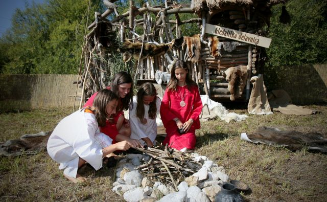 IG SLOVENIJA 20.8.2011 KOLISCARSKI FESTIVAL FOTO: JOZE SUHADOLNIK/DELO