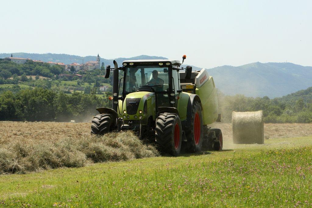 Nepovratna sredstva za naložbe v kmetijskih gospodarstvih