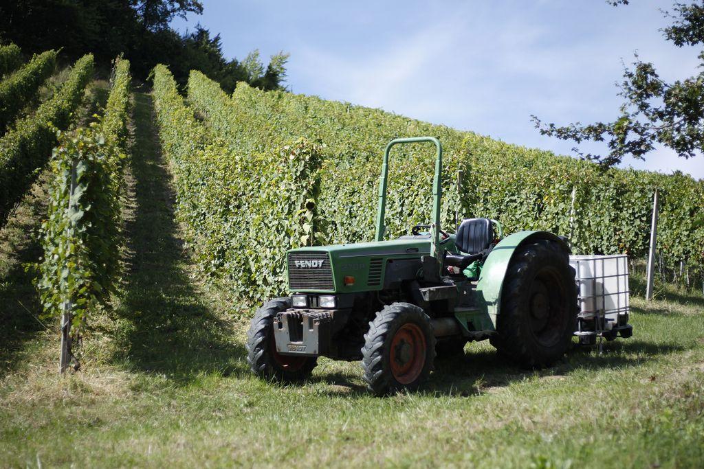 Robot lahko poceni dela na polju ali v vinogradu