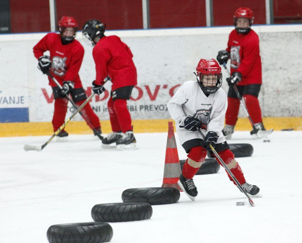 Nemoč politike in hokej