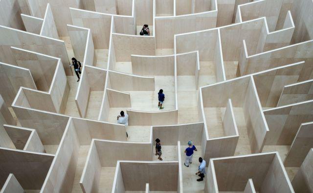 afp*Big Maze