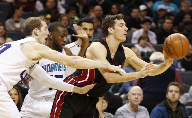Heat Hornets Basketball