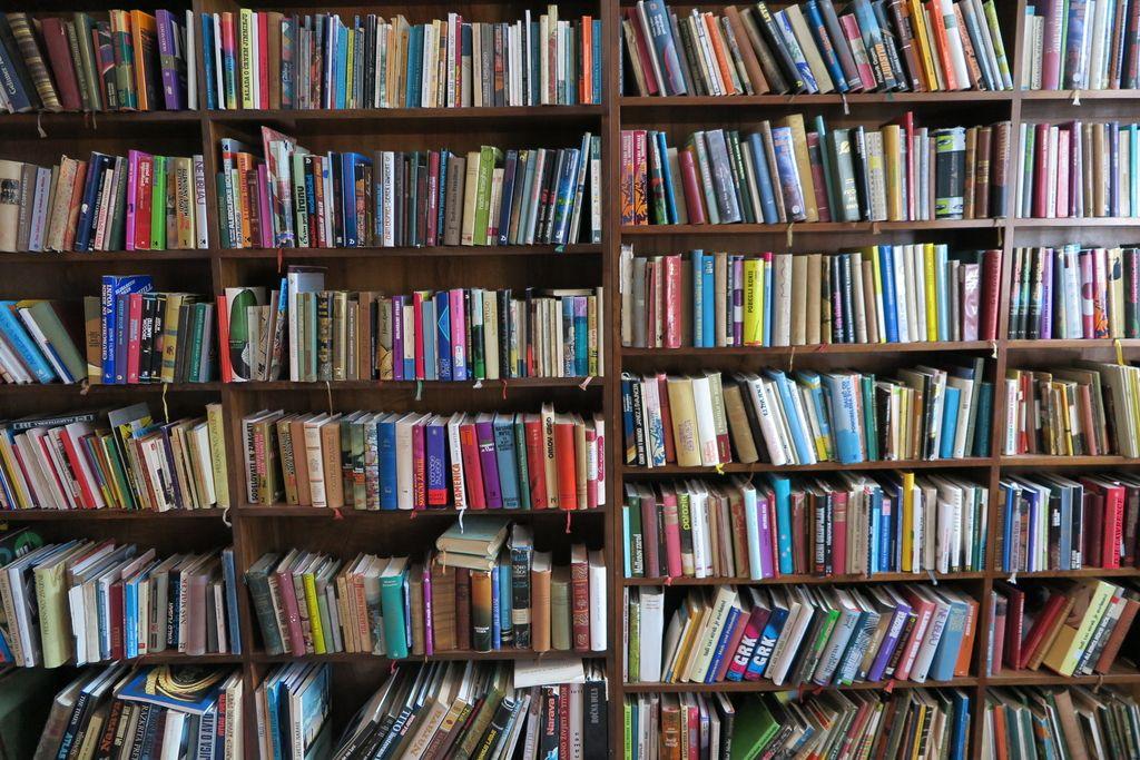 Smo s spletom kaj bliže knjigam na trgu?
