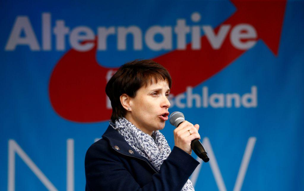 Nov razcep v desničarski Alternativi za Nemčijo