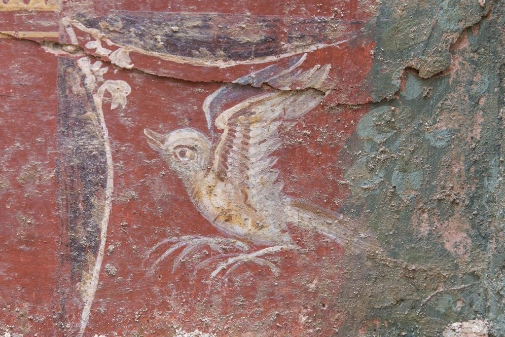 V celjskih tleh zdaj navdušujejo freske
