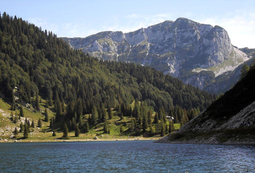 Naš edini narodni park je že štiri leta brez direktorja s polnimi pooblastili