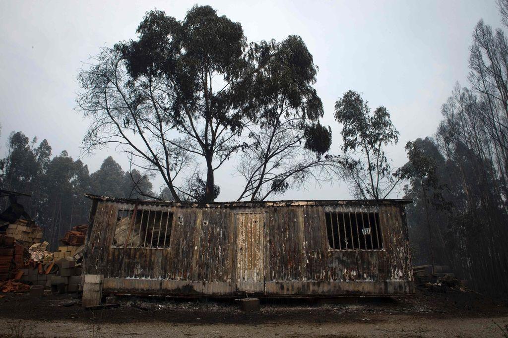 Portugalski gasilci še vedno bijejo bitko z uničujočim gozdnim požarom