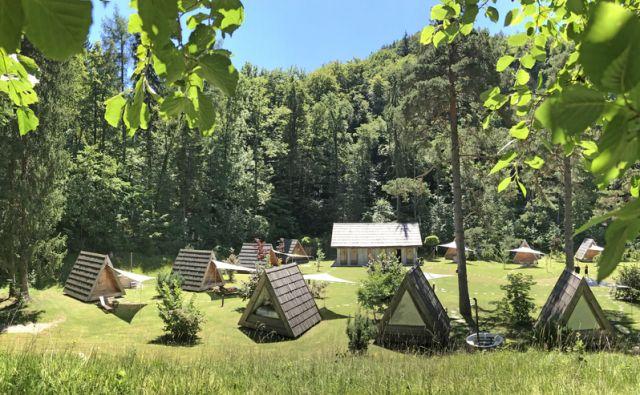 Glamping Gozdne vile v kampu Bled, 17. Julij 2017 [Glamping,Gozdne vile,kempi,Bled,turizem]