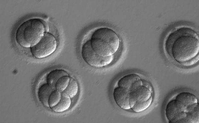 Genetic Frontiers Repairing Embryos