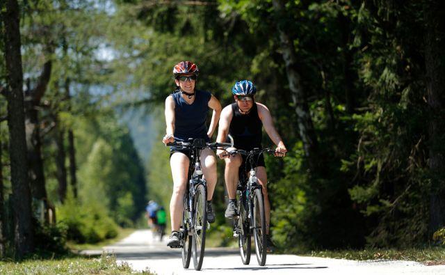 Kolesarji na kolesarski stezi D-2 med Jesenicami in Ratečami, v Gozdu Martuljku, 1. avgusta 2017. [kolesarstvo,rekreacija,kolesa,kolesarji]