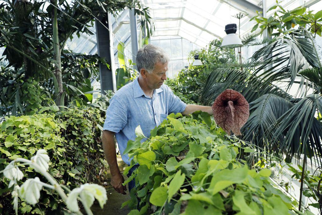 Inšpekcija botaničnemu vrtu prepoveduje rabo vode