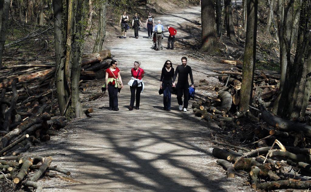 Krajinski park Tivoli bodo upravljali s Povšetove