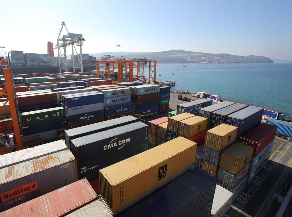 Izvoz in uvoz januarja z več kot desetodstotno rastjo