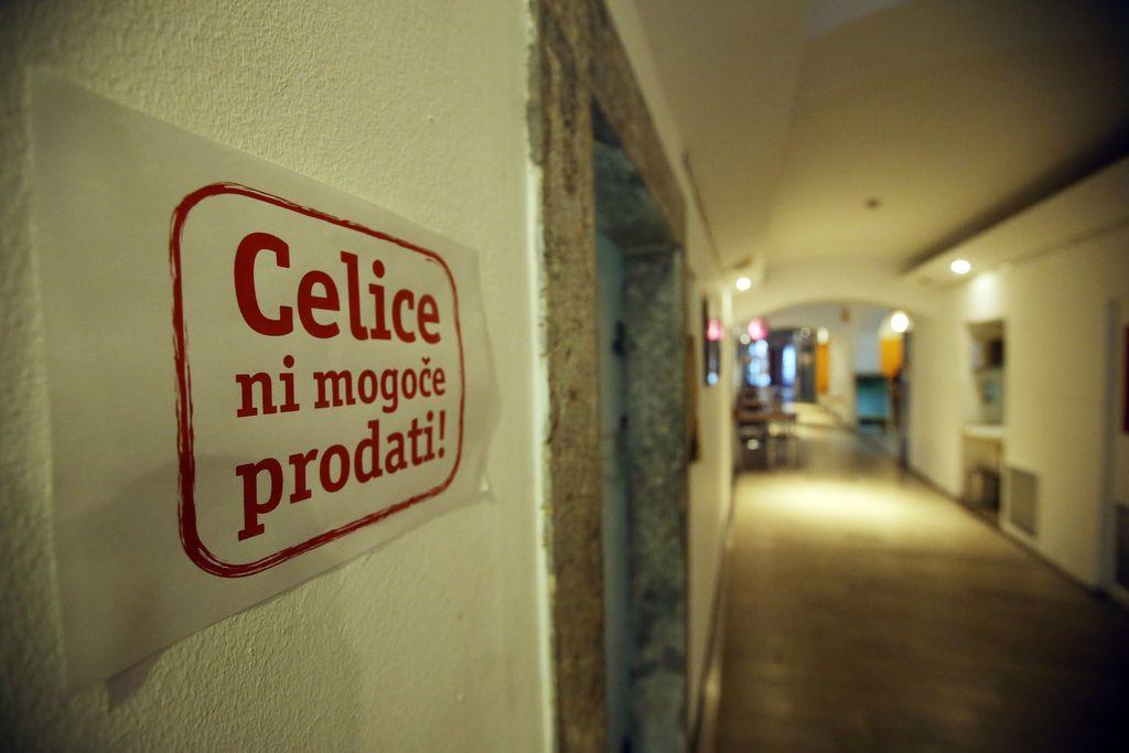 Celica ostaja v lasti Mola, upravljal jo bo Ljubljanski grad