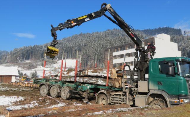 Prizorišče dražbe najvrednejšega slovenskega lesa