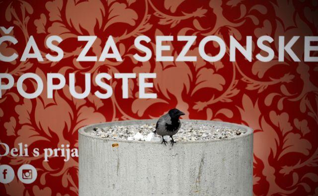 Popusti,vrana 31,januarja 2018 [popusti,vrane,motivi,Ljubljana]