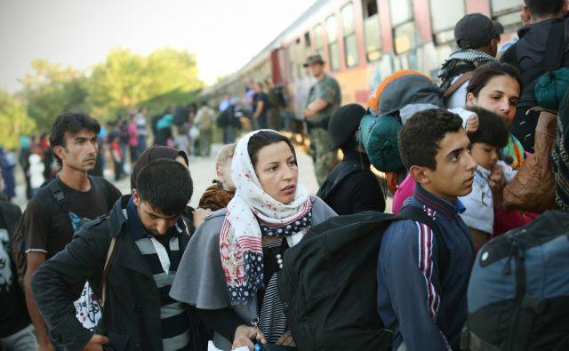 Begunci iz begunskega centra vstopajo na prvi jutranji vlak proti Srbiji. Gevgelija, Makedonija 28.avgusta 2015. [begunci,družine,vlaki,ženske,begunski centri]