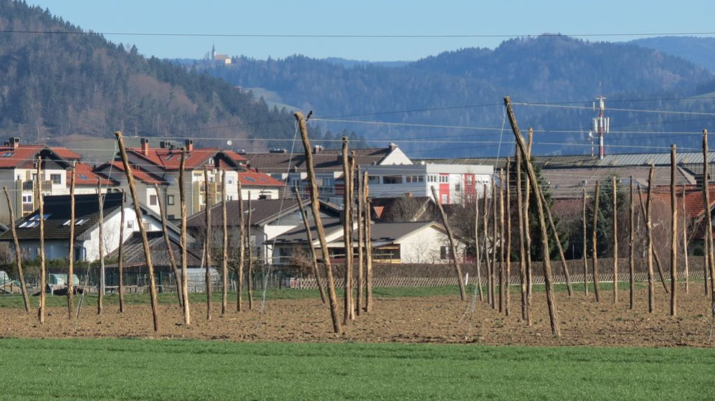 Slovenj Gradec pred hmeljarsko vojno