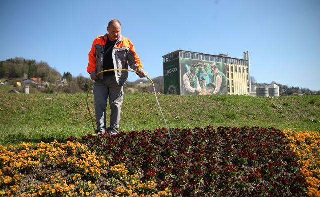 V polnilnici v Laškem se je danes po tekočem traku pripeljala prva pločevinka Heinekena. Zalivanje rož na zelenicah ob reki Savinji. Laško, Slovenija 27.marca 2017. [Pivovarna Laško,Heineken,pivovarne,pivo,zalivanje rož,voda,zelenice,trava,rože]