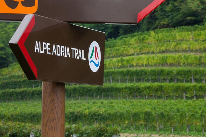 Pohod po poti Alpe Adria Trail povezal udeležence treh dežel
